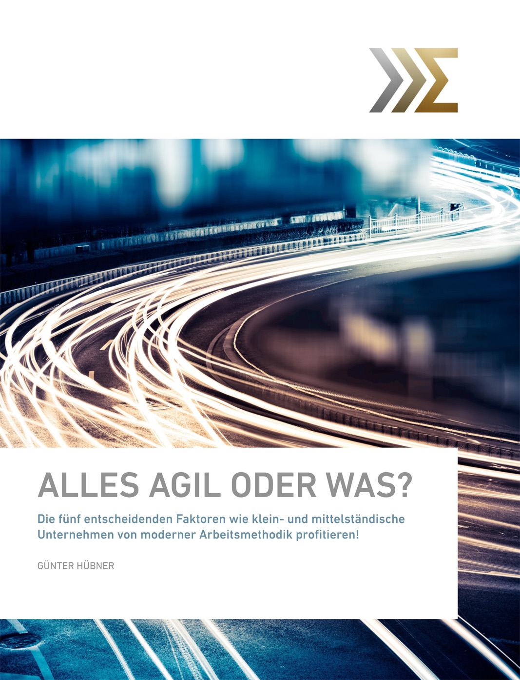 bbi forum ab 2019 e book alles agil oder was cover